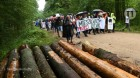 EU's top court says logging in Poland's ancient forest was illegal