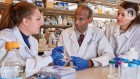 A CRISPR edit for heart disease