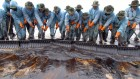 Human errors are behind most oil-tanker spills