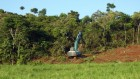 Australian scientists call for tougher restrictions on land clearing