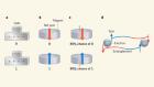 Stochastic magnetic circuits rival quantum computing