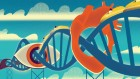 Pharma's roller-coaster relationship with RNA therapies