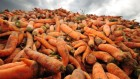 Counting the hidden $12-trillion cost of a broken food system