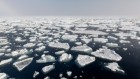 Ozone-depleting gases might have driven extreme Arctic warming
