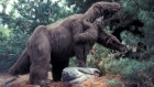 A bone bed reveals mass death of herd of giant ground sloths