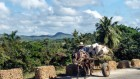 Cuba's rivers run clean after decades of sustainable farming