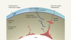 Nitrogen variations in the mantle might have survived since Earth's formation