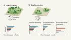 Rethinking extinctions that arise from habitat loss