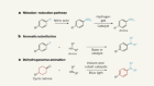Reactions for making widely used aniline compounds break norms of synthesis