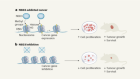 An epigenetic tipping point in cancer comes under the microscope