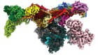 DeepMind's AI predicts structures for a vast trove of proteins