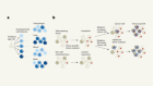 Mutation fingerprints encode cellular histories