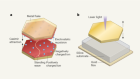 Hybrid light–matter states formed in self-assembling cavities