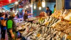 A spotlight on seafood for global human nutrition