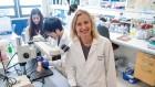 Reversing blindness with stem cells