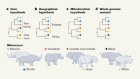 Rhinoceros genomes uncover family secrets
