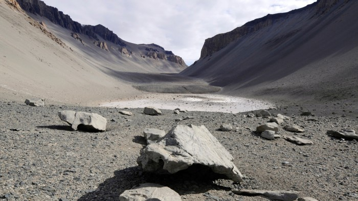 McMurdo Dry Valleys receive very little precipitation, but still support life.