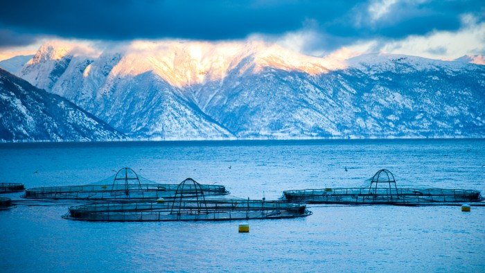 Fish farms, such as this one in Norway, could expand drastically to meet future demand for seafood.